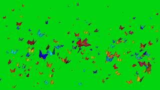 butterfly 3D animation on green screen