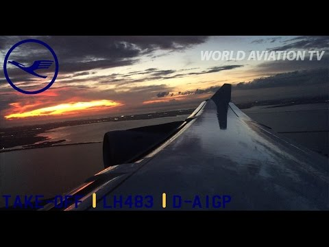 Lufthansa A340-300 Beautiful Sunset Take-Off Tampa [HD]