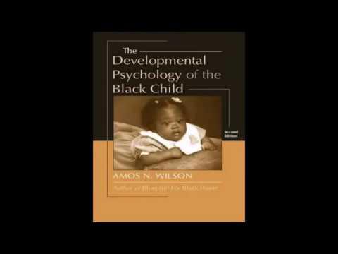 Mhenga Amos N.  Wilson:   Educating the Black Child