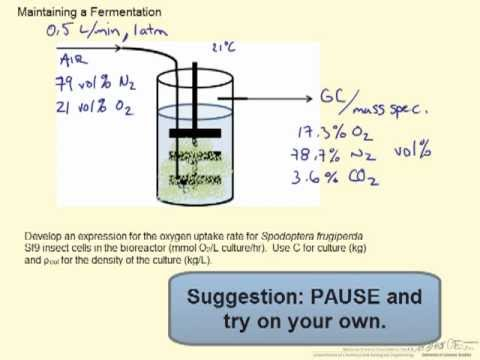 Ideal Gases Example Biofermentation (BIO)