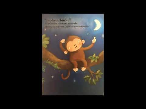Gece Maymunu ve Gündüz Maymunu