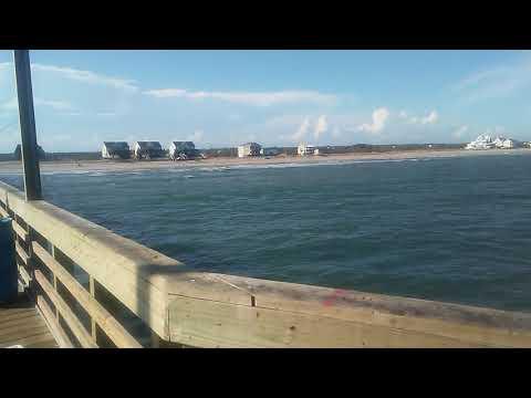 8-7-20 - Fishing Report - Seaview Fishing Pier