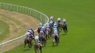 Vidéo de la course PMU PRIX DE FEHRALTORF