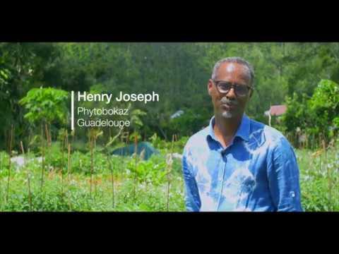 Guadeloupe Bio inspiration et économie Symbiotique 4K @Purevisionfwi