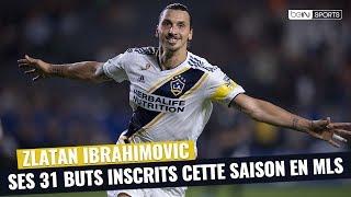 MLS : Tous les buts de la saison de Zlatan Ibrahimovic