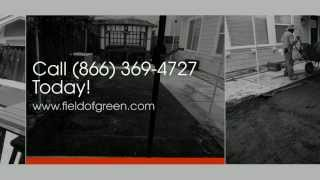Artificial Grass Napa | Dog Grass Napa | Field Of Green