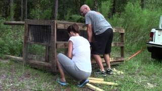 We Picked Up A Used Rabbit Hutch