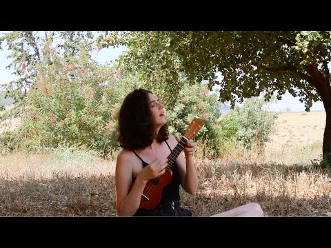 Bye Bye Love - The Everly Brothers (Ukulele Cover)