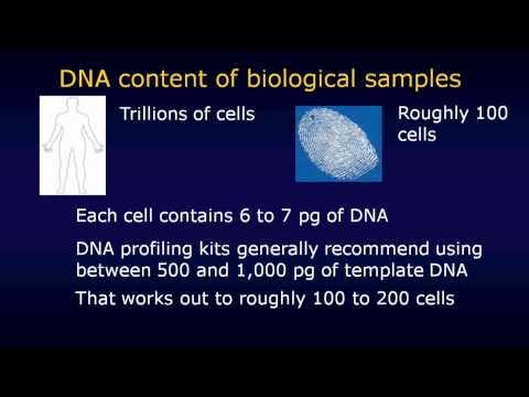 DNA technology in court HD version