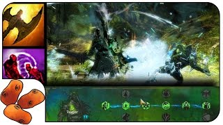 Guild Wars 2 Reaper Gameplay - In Depth Presentation & Discussion