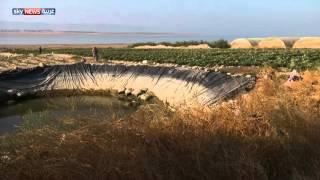 الأردن.. ظهور حفر بالبحر الميت