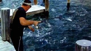 Top Water Fishing with Pat Miletich