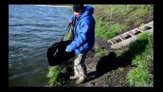видео рыбалка в белгородской области