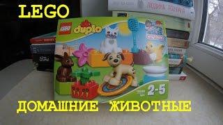 Lego Duplo Домашние животные 10838 | Распаковка | #Rozetka
