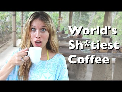 Coffee Made of Poop aka World's Most Expensive Coffee! - Bali, Indonesia