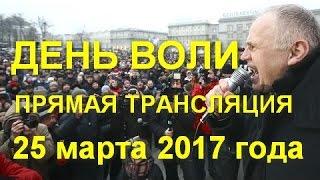 Прямая Трансляция - День Воли 2017