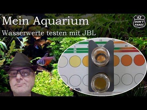 Wasserwerte messen mit JBL | Mein Aquarium 52