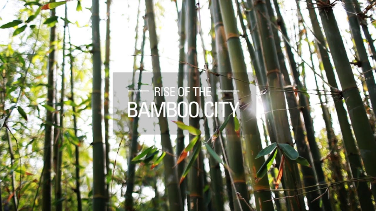 Bamboo Canada Rise Of The Bamboo City Teaser Hsbc In The Future I Bamboocity I Hsbc Bank Canada