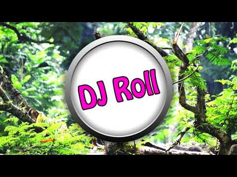 Follow The Flow Vs. Rattle - Hagyod menni (Dj Roll Edit) letöltés