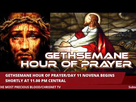 PRECIOUS BLOOD: Gethsemane Hour Of Prayer/July Novena For The 12 Tribes Of Israel- Day 11