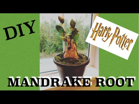 How to make harry potter mandrake baby diy harry potter tutorial how to make harry potter mandrake baby diy harry potter tutorial super fun harry potter craft youtube solutioingenieria Image collections