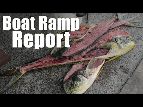 Boat Ramp Report Wednesday Fort Lauderdale