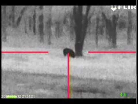Flir Rs64 35 175 Yard Hog Youtube