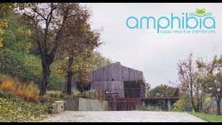 Amphibia by Volteco #staydry