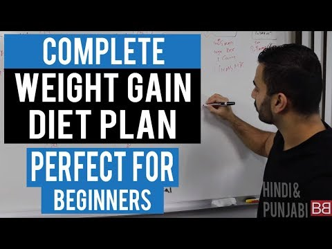Full day diet plan to gain weight for beginners hindi punjabi also rh youtube