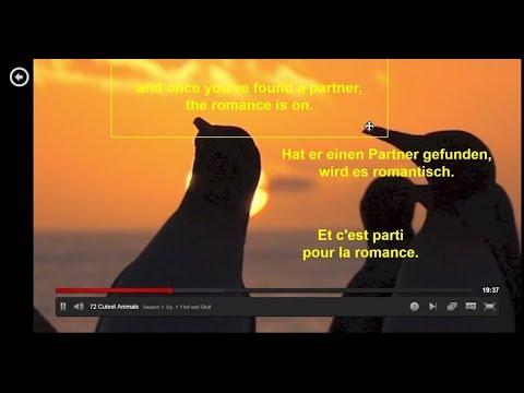 Netflix Multi-Subtitles