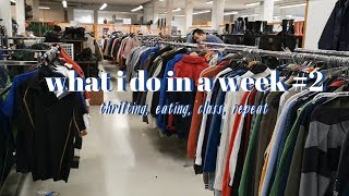 skipping class to go thrifting and other queerities // strony log #2