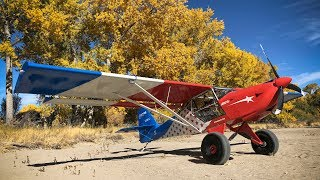 Autumn Bush Flying Shenanigans