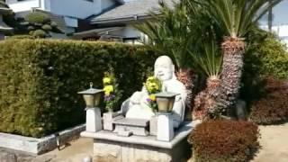 池田市の佛日寺、麻田藩青木氏の菩提寺です。2017年2月16日