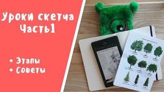 Уроки СКЕТЧа ЧАСТЬ 1 // рисуем деревья