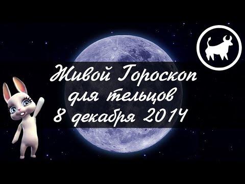 Тельцы 8 на декабря гороскоп