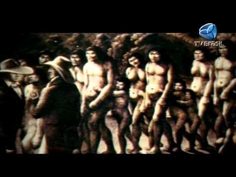 Colonização - Histórias do Brasil 210