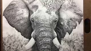 Artist Spends 160 Hours creating Portrait of Elephant out of DOTS!
