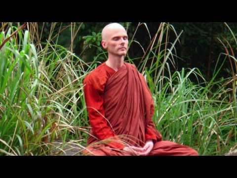 Bhikkhu Anālayo - Exploring the Four Satipatthanas (Guided Meditation)