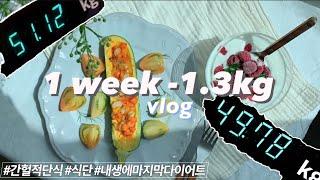 [하비비리사브이로그] 간헐적 단식 + 건강한 채식 메뉴 + 운동으로 건강하게 일주일동안 다이어트 해보기   맛있는 다이어트 야채요리 레시피   다이어트 주간 동안 먹은 것들