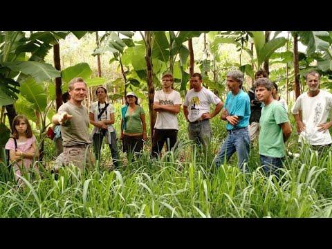 Mô hình Nông nghiệp Sinh thái Hữu Cơ