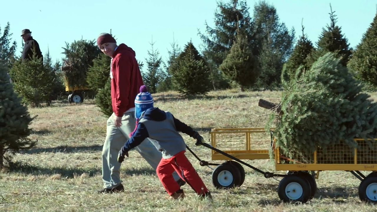 kids at the middleburg christmas tree farm in virginia - Middleburg Christmas Tree Farm