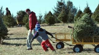 Kids at the Middleburg Christmas Tree Farm in Virginia