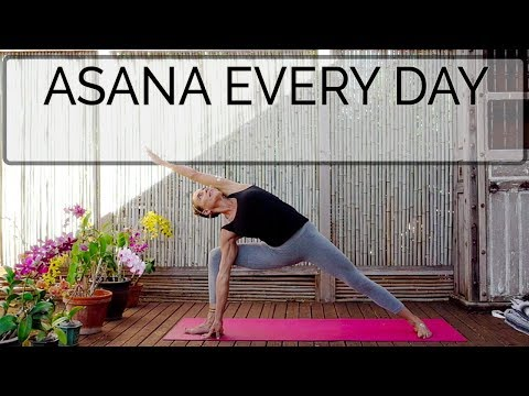 Iyengar Yoga: EveryDay Asana. Int. 53 Min. CdR. OYT.  #Iyengaryoga #intermediateyogavideo