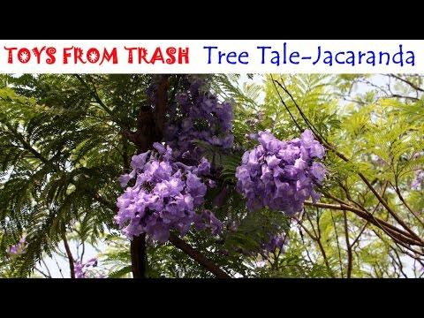 Tree Tale Jacaranda Hindi Youtube