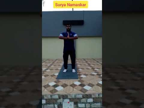 surya namaskar full body warm up  youtube
