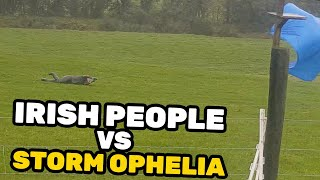 HURRICANE OPHELIA HITS IRELAND (REACTION)