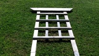 How To Build A Trellis For Around $4.00