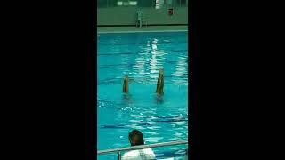 Uluslararası Antalya Muratpaşa SENKRONİZE YÜZME Yarışları 1