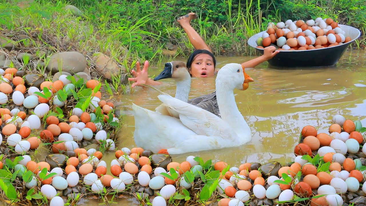 Woman Found Goose egg and Bamboo shoot in forest & Fried  egg  Goose for dog Eating delicious HD