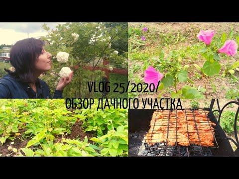 VLOG 25/2020/обзор дачного участка